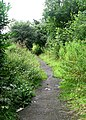 Footpath leading from New Pudsey Station - geograph.org.uk - 907229.jpg