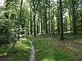 Forêt de Mormal - Nerviens 06.jpg