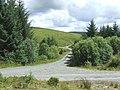 Forest Roads near Esgair Llethr, Ceredigion - geograph.org.uk - 508599.jpg
