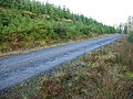 Forest road in Kilmichael Forest - geograph.org.uk - 284895.jpg