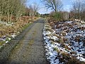 Forest track up Black Hill - geograph.org.uk - 654298.jpg