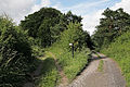 Fork in restricted byways near Newton Tony - geograph.org.uk - 469165.jpg