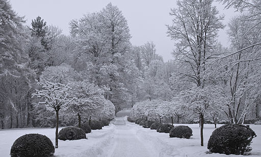 Fresh Snow in the garden of Ambras Castle