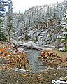 Frosty Morning, Tuolumne River, Yosemite 5-15 (21523391693).jpg