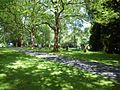 Göttingen Stadtfriedhof Impressionen Bild 1.jpg