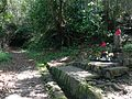 Gankake-Jizo Statues in Usa Shrine.JPG