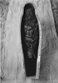 Garland from the Mummy of Prince Amenemhat MET 19.3.209-ac.jpg