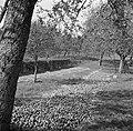 Geoogste appels, Bestanddeelnr 252-0220.jpg