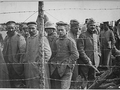 German POWs lined up in camp.png