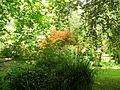 Giardino di Ninfa 18.jpg