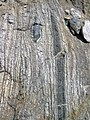 Gneiss with mafic enclaves (Archean; Norris South roadcut, Madison County, Montana, USA) 3 (44803637024).jpg