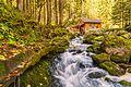 Gollinger Wasserfall ÖSTERREICH 01.jpg