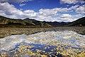 Grass Sea at Lugu Lake.jpg