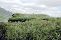 Grass covered house in Iceland