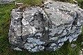 Graues, feinkörniges Gestein auf Great Bernera.jpg