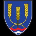 Grb Žitorađe.png