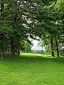 Green Track, Danby Park - geograph.org.uk - 439833.jpg