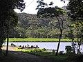 Grenada Lake Grand Etang - panoramio.jpg