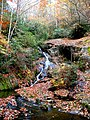 Griffith Branch Waterfall-27527.jpg