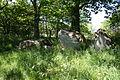 Großsteingrab Dwasieden 29.JPG