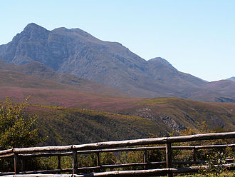 Swellendam - The Grootvadersbosch Nature Reserve against the Langeberg Mountains