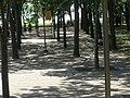 Grounds P7100090.jpg