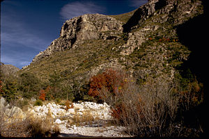Guadalupe Mountains National Park GUMO3340.jpg