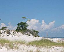 Gulf Beaches Near New Orleans