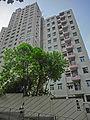 HK 天后 Tin Hau 寶雲道 Cloud View Road Viking Villa facades Mega Court tree April-2014.JPG