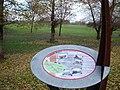 Hackney Marsh, E9 - geograph.org.uk - 91209.jpg