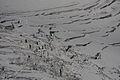 Hallstätter Gletscher5811.JPG