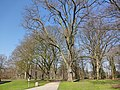 Hamm, Germany - panoramio (4350).jpg