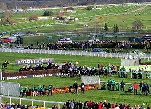 Cheltenham Racecourse - Handicap chase, 2014