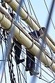 Hanse Sail 2011 (6385946287).jpg