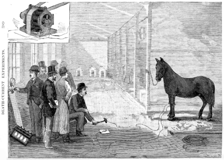 Harold Brown demonstrating the killing power of AC to the New York Medico-Legal Society by electrocuting a horse at Thomas Edison's West Orange laboratory. Harold Pitney Brown edison electrocute horse 1888 New York Medico-Legal Journal vol 6 issue 4.png