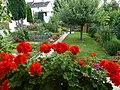 Hausgarten in der Nähe der Rheinauen - panoramio.jpg
