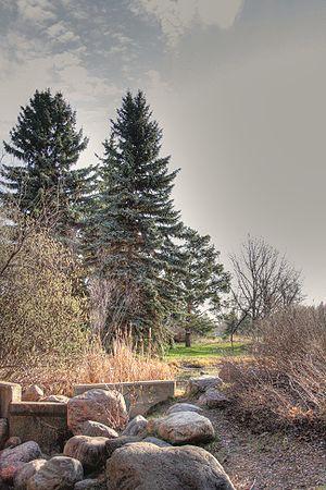 William Hawrelak Park - Stream bed in Hawrelak Park