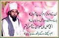 Hazrat khawaja Faqeer Sufi , Shabbir Hussain Shah Naqeebi (R.A).jpg