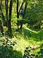 Heiligensee - Weidengraben - geo.hlipp.de - 41542.jpg