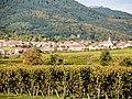 Heiligenstein, vu de la route de Goxwiller. (1).jpg