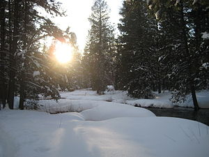 Donner Lake - Hiking through Donner Memorial State Park in the winter.