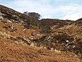 Hillside, near Pollachoire - geograph.org.uk - 752379.jpg