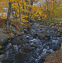 Ho-Ho-Kus Brook, Ho-Ho-Kus, NJ, in autumn.jpg
