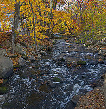 A stream with some rapids and rocks flows along a curved section between rocky shores with autumn leaves on the trees sheltering it