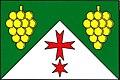 Hodonice ZN flag.jpg
