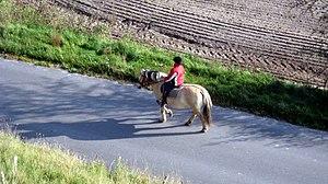 English: Horse riding