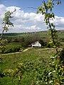 Houses at Burnside - geograph.org.uk - 445807.jpg