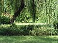 Hungary, Gyömrő, a Teleki kastély parkja 01.JPG
