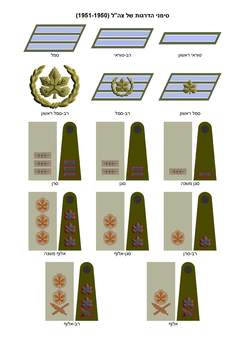 IDF (Ground Forces) insignia of ranks 1950-1951