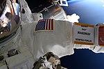 ISS-53 EVA 242nd Birthday of the Marine Corps.jpg